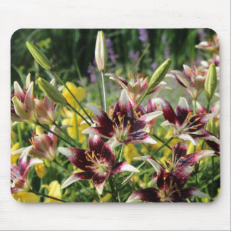Lilies!  Burgundy Asiatic & Yellow Reblooming Mouse Pad