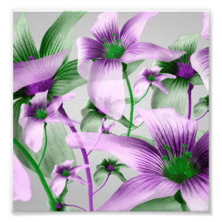 Lilies Collage Art in Green and Violet Colors Art Photo