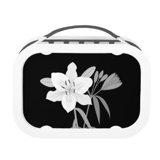 Lilies Illustration in Monochrome Lunch Box