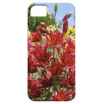 Lilies iPhone case iPhone 5 Cover