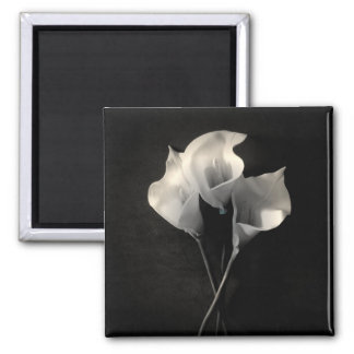 Lilies Magnet