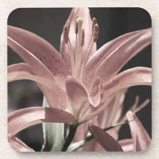 Lilies-Muted Tones by Shirley Taylor Drink Coaster
