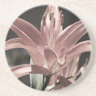 Lilies-Muted Tones by Shirley Taylor Sandstone Coaster