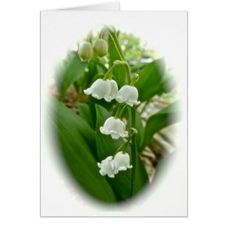 Lilies of the Valley Greeting Cards