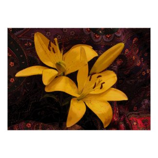 Lilies on Paisley Print