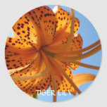 LILIES STICKERS Orange Tiger Lily Flowers Gifts