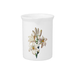Lilium Candidum or Madonna Lily By Redoute Pitcher