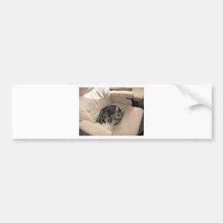 Lillie Bumper Sticker