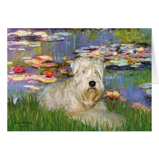 Lillies 2 - Wheaten Terrier 1 Card