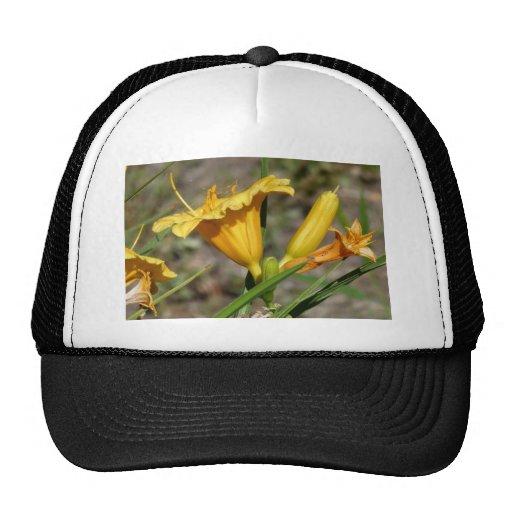 Lillies amarillo gorros bordados