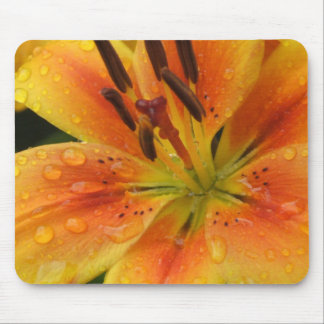 Lillies en la lluvia alfombrillas de ratón