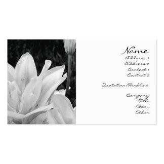Lillies in Black & White Profile Card