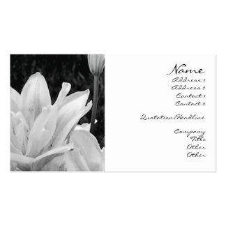 Lillies in Black & White Profile Card Double-Sided Standard Business Cards (Pack Of 100)