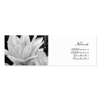 Lillies in Black & White Profile Card Double-Sided Mini Business Cards (Pack Of 20)