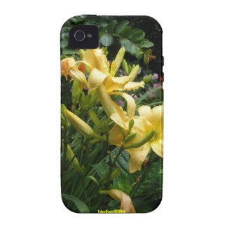Lillies in Richmond I Vibe iPhone 4 Cover