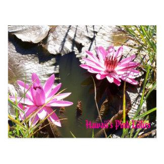 Lillies rosado de Hawaii Postal