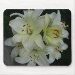 Lillies Tapetes De Raton