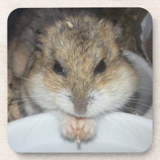 Lillith's Cheeks Drink Coaster