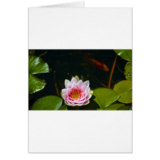 Lilly and Lotus Card