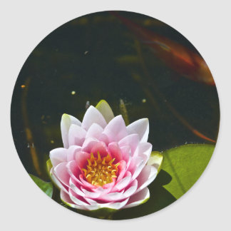 Lilly and Lotus Classic Round Sticker