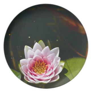 Lilly and Lotus Dinner Plate