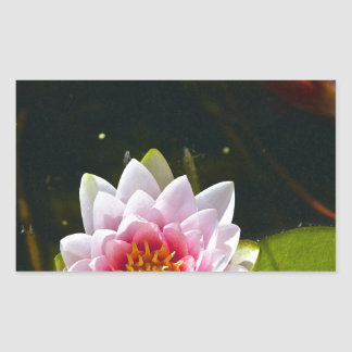 Lilly and Lotus Rectangular Sticker