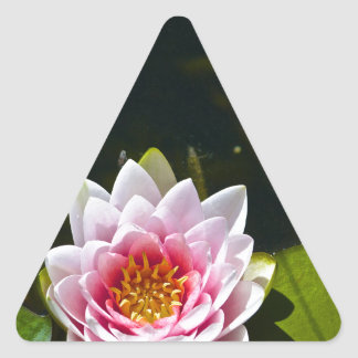 Lilly and Lotus Triangle Sticker