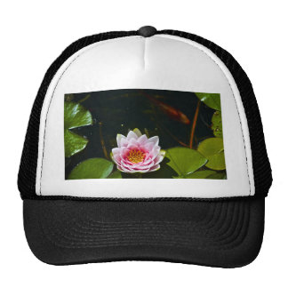 Lilly and Lotus Trucker Hat
