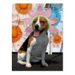 Lilly - beagle -2 postal