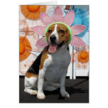 Lilly - beagle -2 tarjetas
