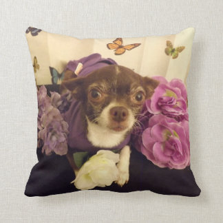 Lilly Chihuahua Dog Pillow