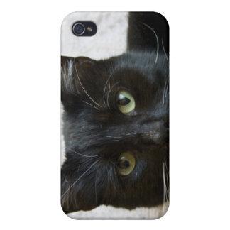 Lilly el gato i iPhone 4/4S funda