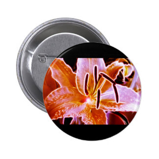 Lilly eléctrico pin