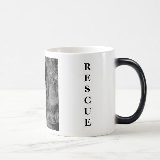 Lilly Equine Rescue Mug