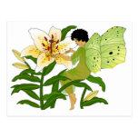 Lilly Fairy Postcard