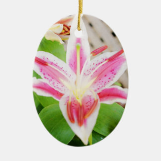 Lilly for a Cure Breast Cancer Awareness Ornaments