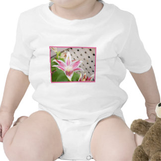 Lilly for a Cure... Breast Cancer Awareness Baby Creeper