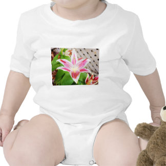 Lilly for a Cure Breast Cancer Awareness Rompers