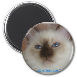 Lilly holy Burma 2 Inch Round Magnet