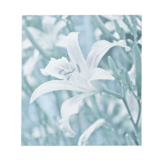Lilly in the rain memo pads