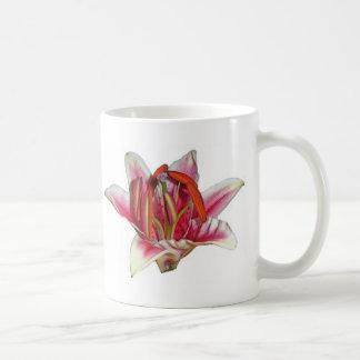 lilly mug