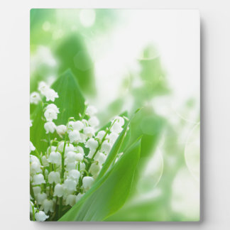 Lilly of the valley plaque