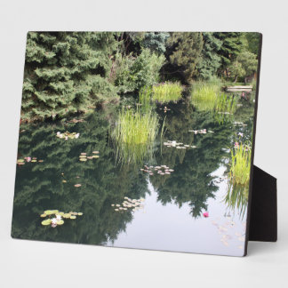 Lilly Pad Reflecting Pond Japanese Plaque