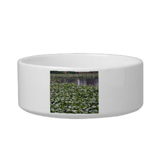 Lilly pads on a pond pet bowl