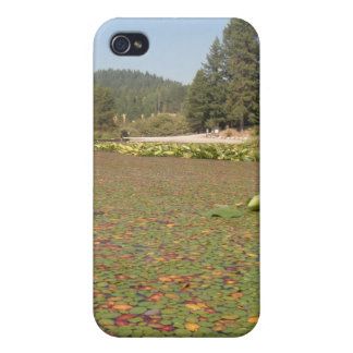 Lilly Pads Rose Lake Idaho iPhone 4 Cover