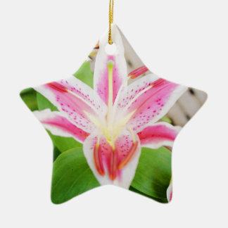 Lilly para una conciencia del cáncer de pecho de l adorno de navidad