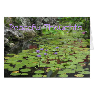 Lilly Pond Card