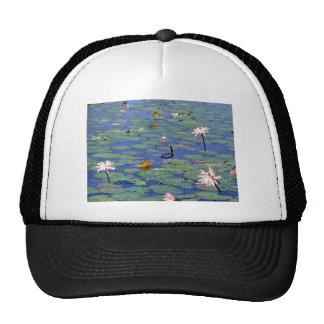 Lilly pond hat