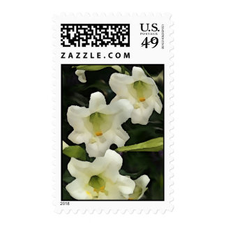 Lilly Stamps