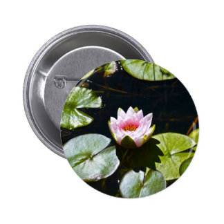 Lilly y Lotus Pins